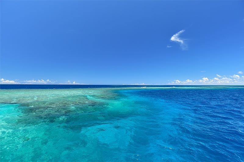 【ブログ】日本最大級のサンゴ礁 その名は八重干瀬(やびじ)