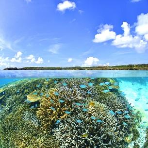 沖合からシギラビーチを望む
